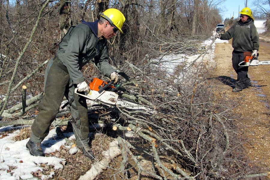 Landclearing-brush-removal-mass