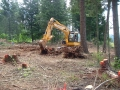 landclearing-ma12